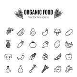 owocowej ikony ustaleni warzywa Weganinów naturalni życiorys piktogramy Karczoch, asparagus, banatka, banany, winogrona, leeks, c Fotografia Royalty Free