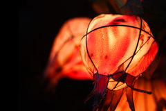 owocowi lampiony Fotografia Royalty Free