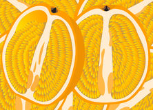 Owocowi tła 5 Obrazy Stock