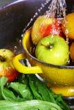 owocowy domycie Obraz Stock
