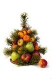 Owocowy drzewo Zdjęcie Stock