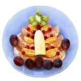 Owocowy drzewo na talerzu na białym tle Obraz Royalty Free