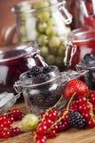 Owocowy jamand, set szklani słoje Fotografia Stock