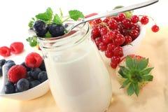 owocowy jogurt Obraz Royalty Free