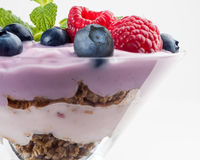 Owocowy jogurt Obrazy Stock