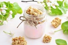 Owocowy jogurt z wholegrain crunchy Fotografia Royalty Free