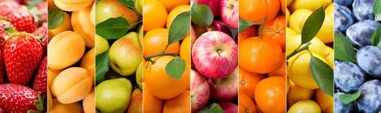 Owocowy kolaż różnorodni typy owoc zdjęcie stock