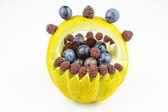 Owocowy kosz melony odizolowywający na białym tle fotografia royalty free