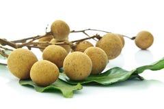 owocowy longan Fotografia Stock