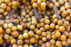 owocowy longan tropikalny Zdjęcie Royalty Free