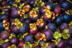 Owocowy mangostan Thailand zdjęcie stock