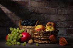 Owocowy żniwo w jesieni Zdjęcie Royalty Free