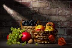 Owocowy żniwo w jesieni Zdjęcia Royalty Free
