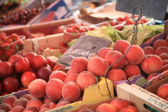 owocowy rynek Fotografia Royalty Free
