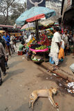 Owocowy rynek w Kolkata Fotografia Stock