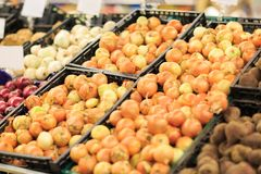 Owocowy rynek z różnorodnymi kolorowymi świeżymi owoc i warzywo szef kuchni pojęcia karmowa świeża kuchni oleju oliwka nad dolewa fotografia royalty free