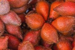 owocowy Salacca lub zalacca Tam jest oba słodki smak Obraz Stock