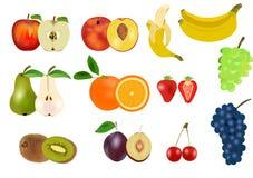 owocowy set Obraz Royalty Free