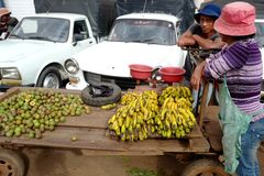 owocowy stojak w Madagascar Zdjęcie Royalty Free