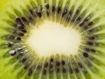 owocowy tło kiwi lubi drzewa Zdjęcia Royalty Free