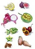 owocowy tropikalny Obrazy Royalty Free