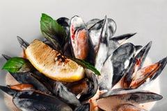 Owocych morzy mussels w kremowym kumberlandzie z cytryną i basilem w białym talerzu obrazy royalty free