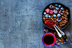 Owsa granola rozdrobni Fotografia Stock
