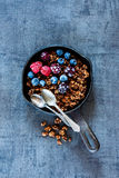 Owsa granola rozdrobni Fotografia Royalty Free