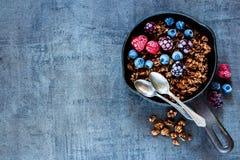 Owsa granola rozdrobni Zdjęcie Stock