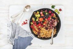 Owsa granola rozdrobni z świeżymi ogrodowymi jagodami i ziarnami Zdjęcie Stock