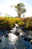 Owyhee River Canyon Stock Photo