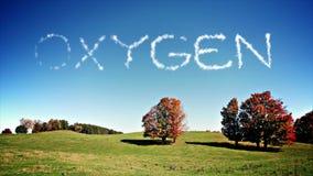 oxígeno ilustración del vector