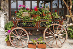 Ox Cart with Flowers Stock Photos