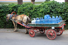 Ox cart to sell water Stock Images