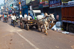 OX chart in the narrow streets of old Delhi Royalty Free Stock Photography