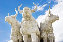 Ox  sculpture  outside. Three bull or ox sculpture is under the sky outside Stock Image