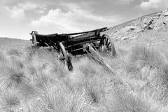 Ox wagon Royalty Free Stock Photography