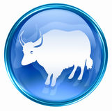 Ox Zodiac icon blue Stock Photo