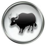 Ox Zodiac icon grey Royalty Free Stock Image