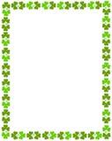 oxalide petite oseille de cadre Image stock