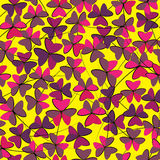 Oxalis flower of seamless pattern.  Stock Photo