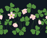 Oxalis pattern. Seamless texture with flower and green leaves Royalty Free Stock Images