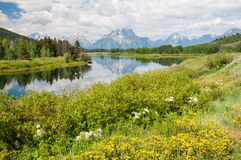 Oxbow Bend Royalty Free Stock Photo