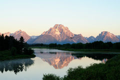 Oxbow Bend, Wyoming (2). Oxbow Bend in Grand Teton National Park, at sunrise with bird, Wyoming Stock Image