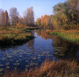 Oxbow de Bobrovnia Images libres de droits