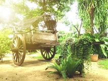 Oxcart Stock Photography