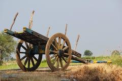 Oxevagn nära ett risfältfält Royaltyfri Foto