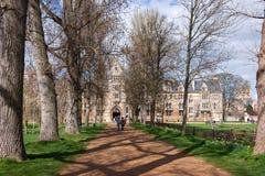 OXFORD, OXFORDSHIRE/UK - 25 DE MARZO: Una visión abajo de una avenida alineada árbol Foto de archivo libre de regalías