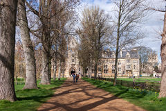 OXFORD, OXFORDSHIRE/UK - MARCH 25 : A view down a tree lined ave Royalty Free Stock Photo