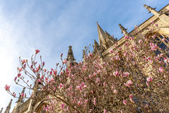 Oxford in spring morning Royalty Free Stock Photos